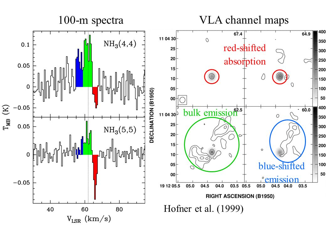 red-shifted absorption bulk emission blue-shifted emission VLA channel maps 100-m spectra Hofner et al.