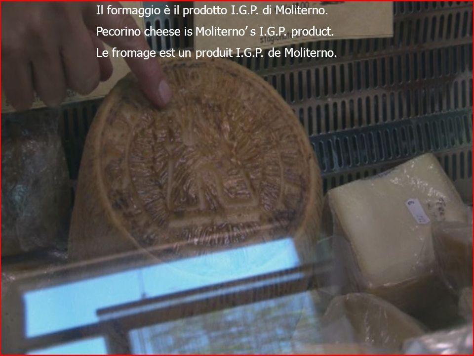 Il formaggio è il prodotto I.G.P. di Moliterno. Pecorino cheese is Moliterno s I.G.P.