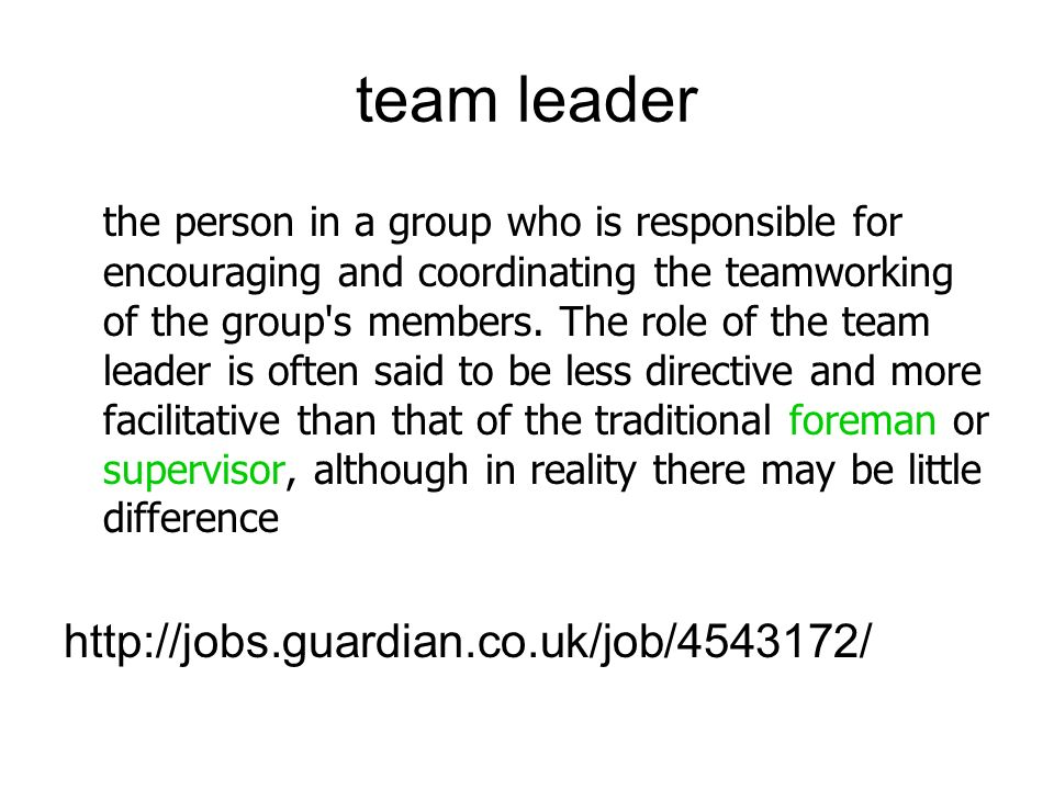 team leader the person in a group who is responsible for encouraging and coordinating the teamworking of the group s members.