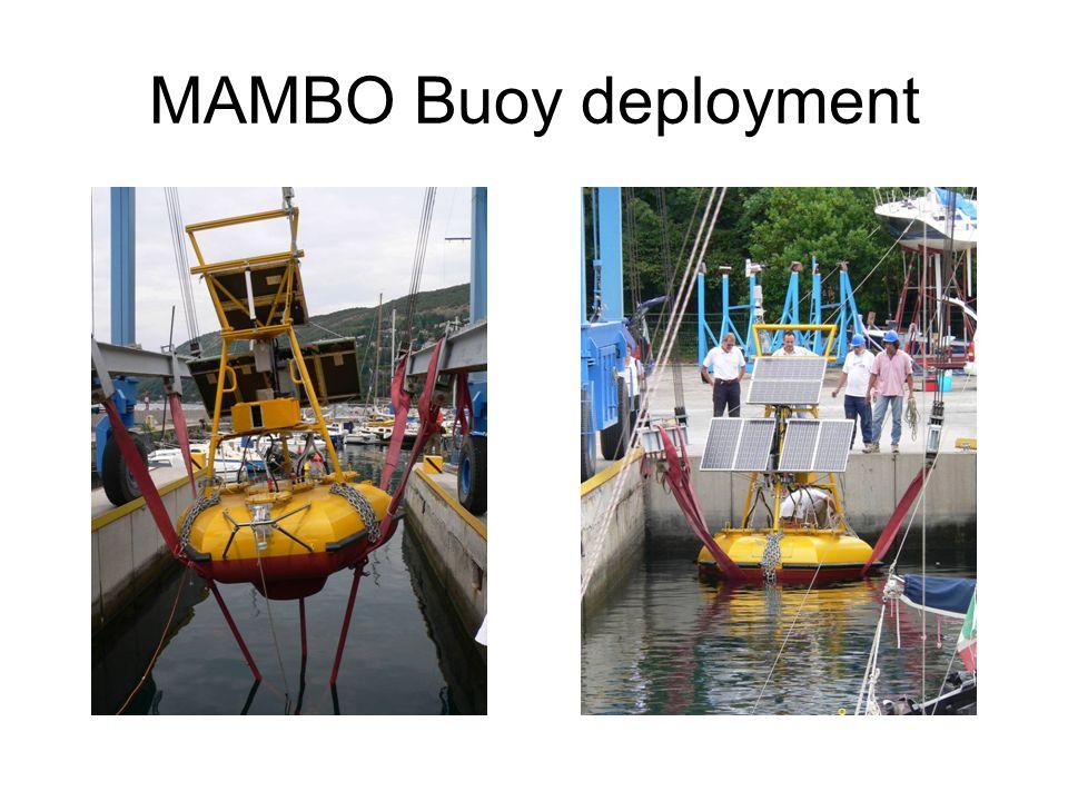 MAMBO Buoy deployment
