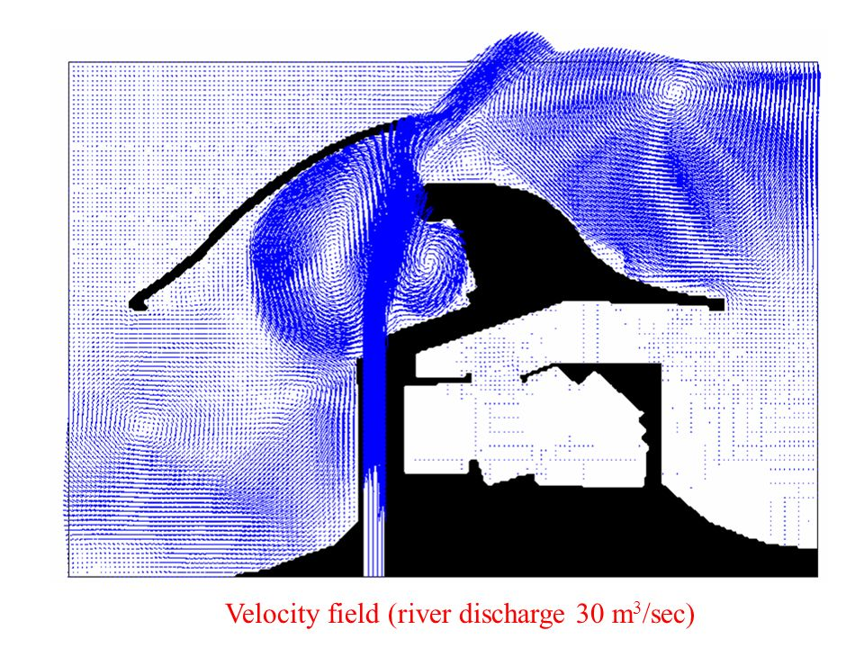 Velocity field (river discharge 30 m 3 /sec)