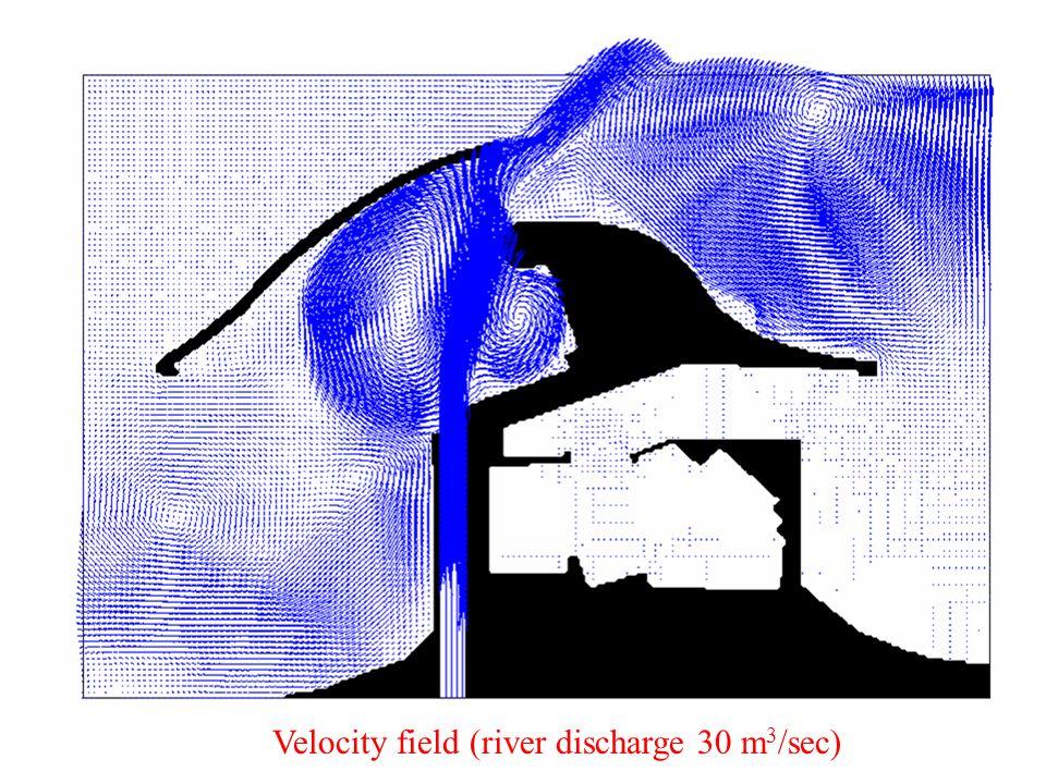 Velocity field (river discharge 30 m 3 /sec)