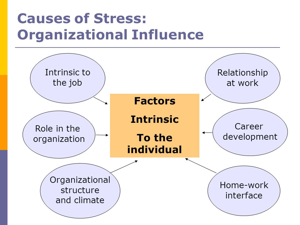 Causes of Stress: Organizational Influence Intrinsic to the job Relationship at work Factors Intrinsic To the individual Role in the organization Orga