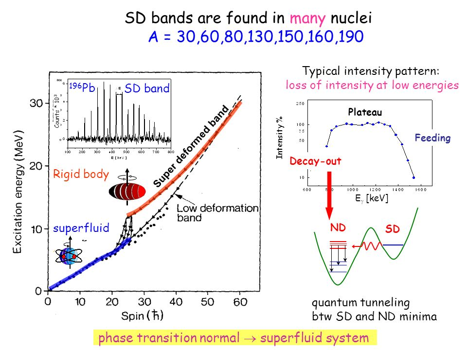 phase transition normal superfluid system Decay-out Feeding Plateau Intensity % E [keV] SD bands are found in many nuclei A = 30,60,80,130,150,160,190