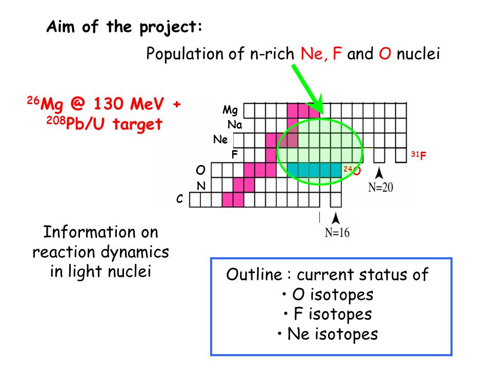 Population of n-rich Ne, F and O nuclei C N O F Ne Na Mg 31 F 24 O Information on reaction dynamics in light nuclei Aim of the project: Outline : current status of O isotopes F isotopes Ne isotopes 26 Mg @ 130 MeV + 208 Pb/U target