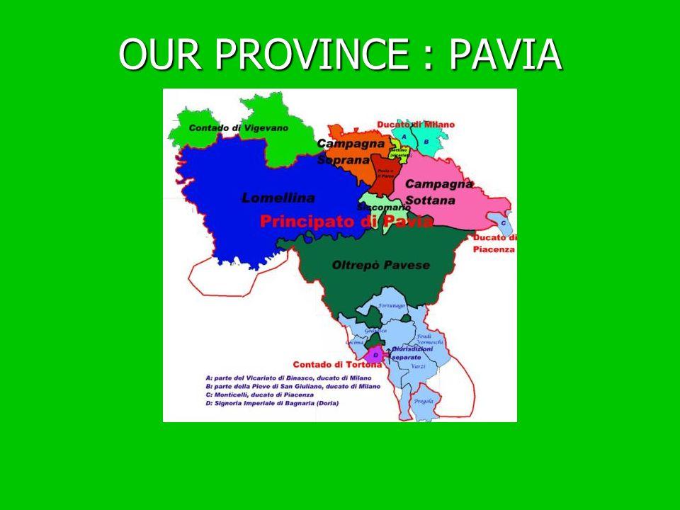 OUR PROVINCE : PAVIA