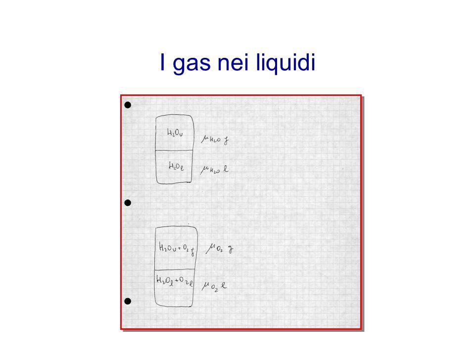 I gas nei liquidi