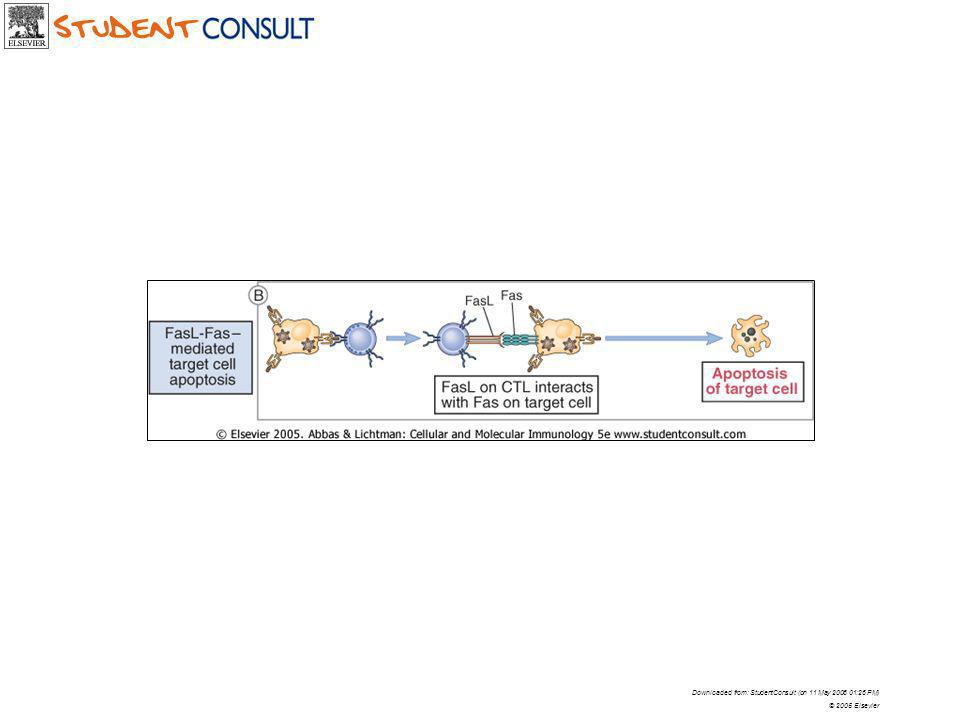 Downloaded from: StudentConsult (on 11 May 2006 01:26 PM) © 2005 Elsevier