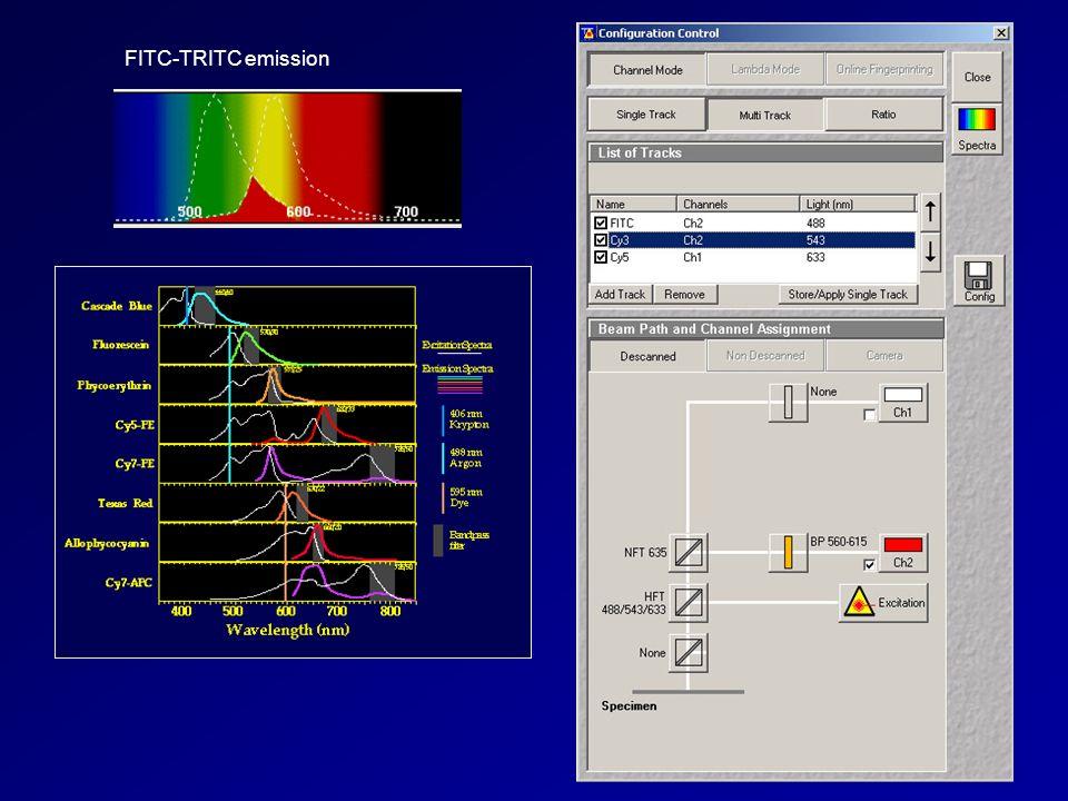 FITC-TRITC emission