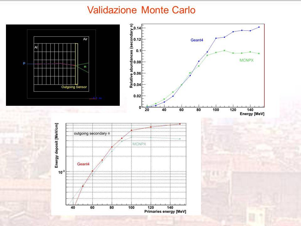Validazione Monte Carlo