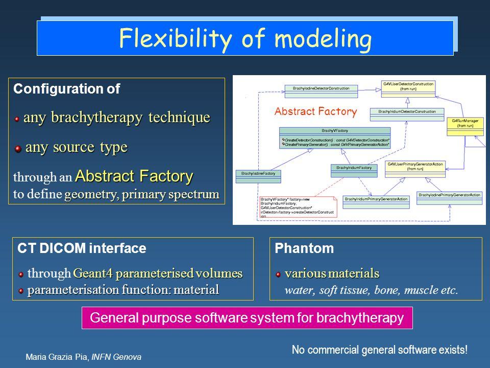 Maria Grazia Pia, INFN Genova Flexibility of modeling CT DICOM interface Geant4 parameterised volumes through Geant4 parameterised volumes parameteris