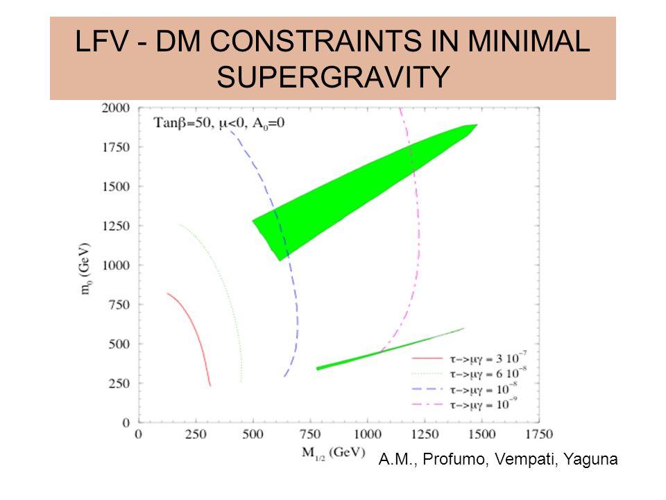 LFV - DM CONSTRAINTS IN MINIMAL SUPERGRAVITY A.M., Profumo, Vempati, Yaguna