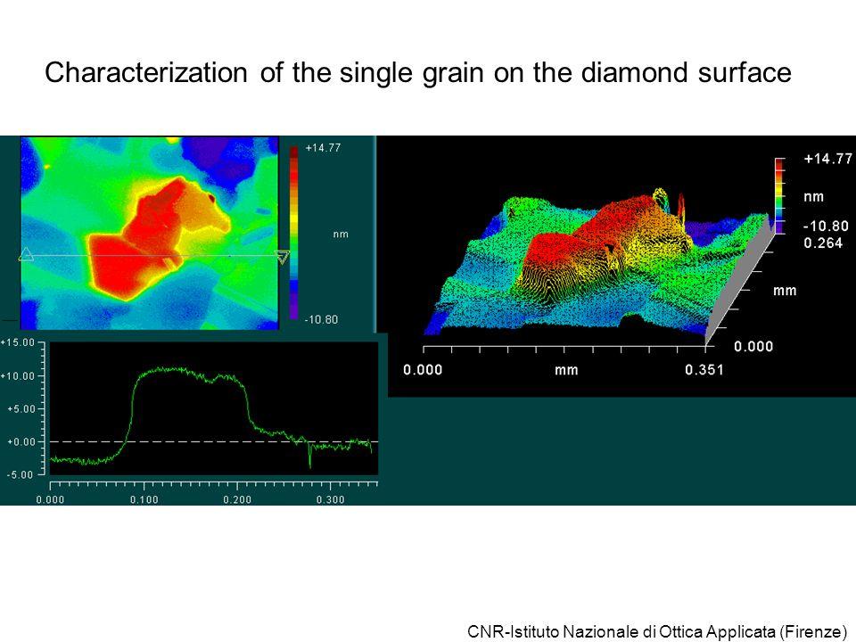 CNR-Istituto Nazionale di Ottica Applicata (Firenze) Characterization of the single grain on the diamond surface
