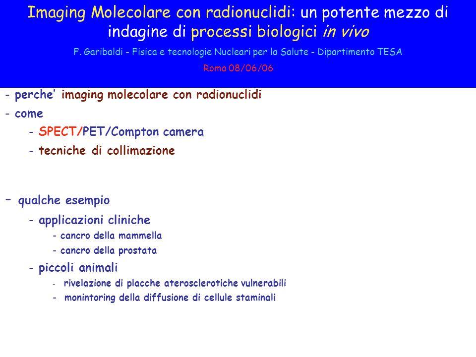 Imaging Molecolare con radionuclidi: un potente mezzo di indagine di processi biologici in vivo F.