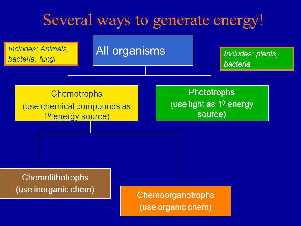 Several ways to generate energy! All organisms Chemotrophs (use chemical compounds as 1 0 energy source) Phototrophs (use light as 1 0 energy source)