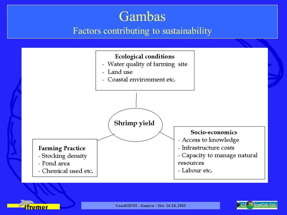 CoastGIS03 - Genova – Oct. 16-18, 2003 Gambas Factors contributing to sustainability