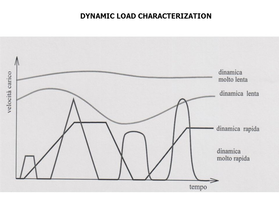 DYNAMIC LOAD CHARACTERIZATION
