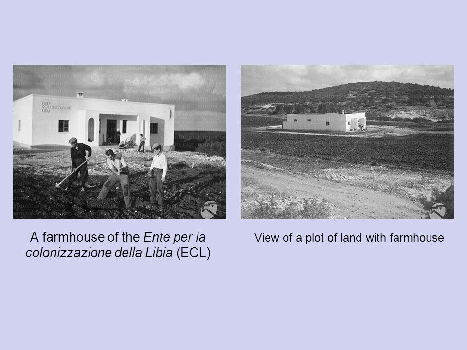 A farmhouse of the Ente per la colonizzazione della Libia (ECL) View of a plot of land with farmhouse