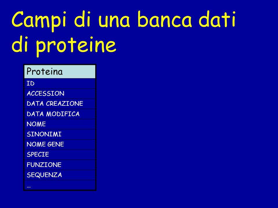 Campi di una banca dati di proteine Proteina ID ACCESSION DATA CREAZIONE DATA MODIFICA NOME SINONIMI NOME GENE SPECIE FUNZIONE SEQUENZA …