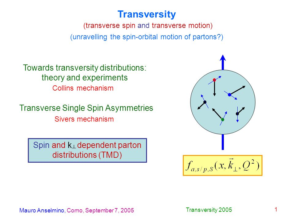 Mauro Anselmino, Como, September 7, 2005 Transversity 2005 1 Transversity (transverse spin and transverse motion) Towards transversity distributions: theory and experiments Transverse Single Spin Asymmetries Spin and k dependent parton distributions (TMD) (unravelling the spin-orbital motion of partons?) Collins mechanism Sivers mechanism