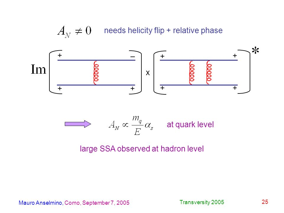 Mauro Anselmino, Como, September 7, 2005 Transversity 2005 25 needs helicity flip + relative phase – + + + x + + + + at quark level large SSA observed at hadron level