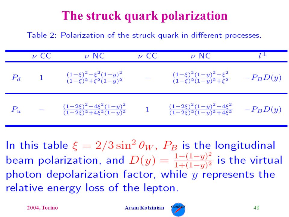 482004, TorinoAram Kotzinian The struck quark polarization