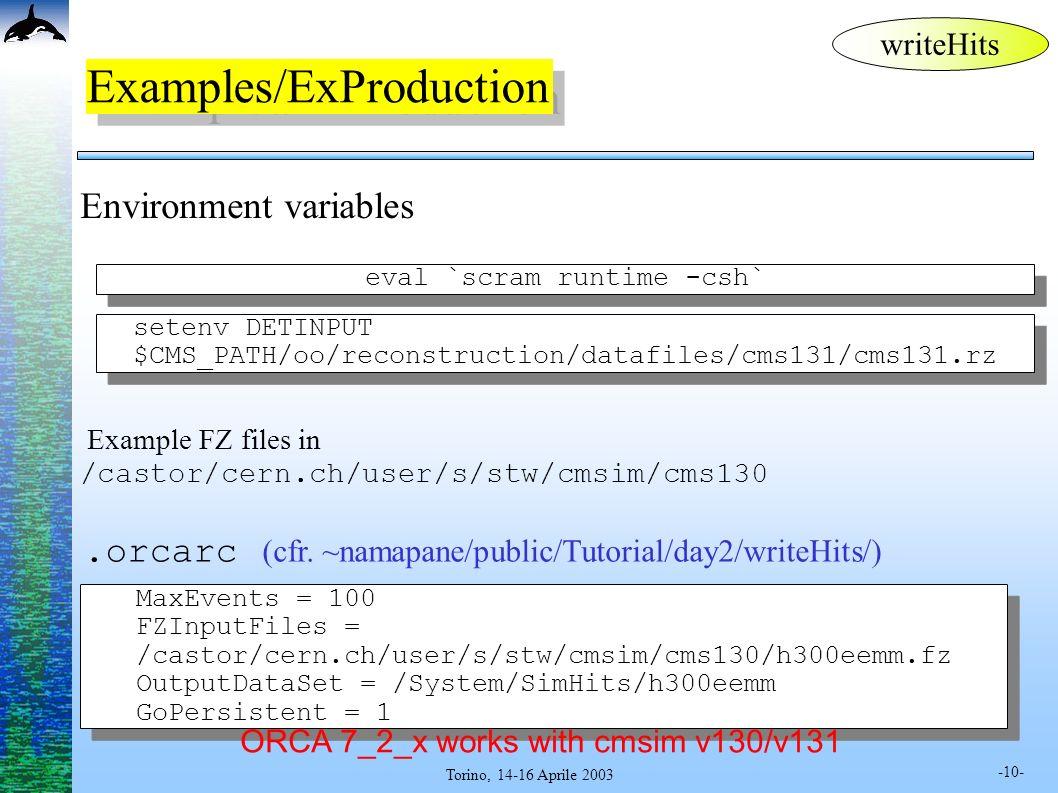 -10- Torino, 14-16 Aprile 2003 Examples/ExProduction.orcarc (cfr. ~namapane/public/Tutorial/day2/writeHits/) Environment variables setenv DETINPUT $CM