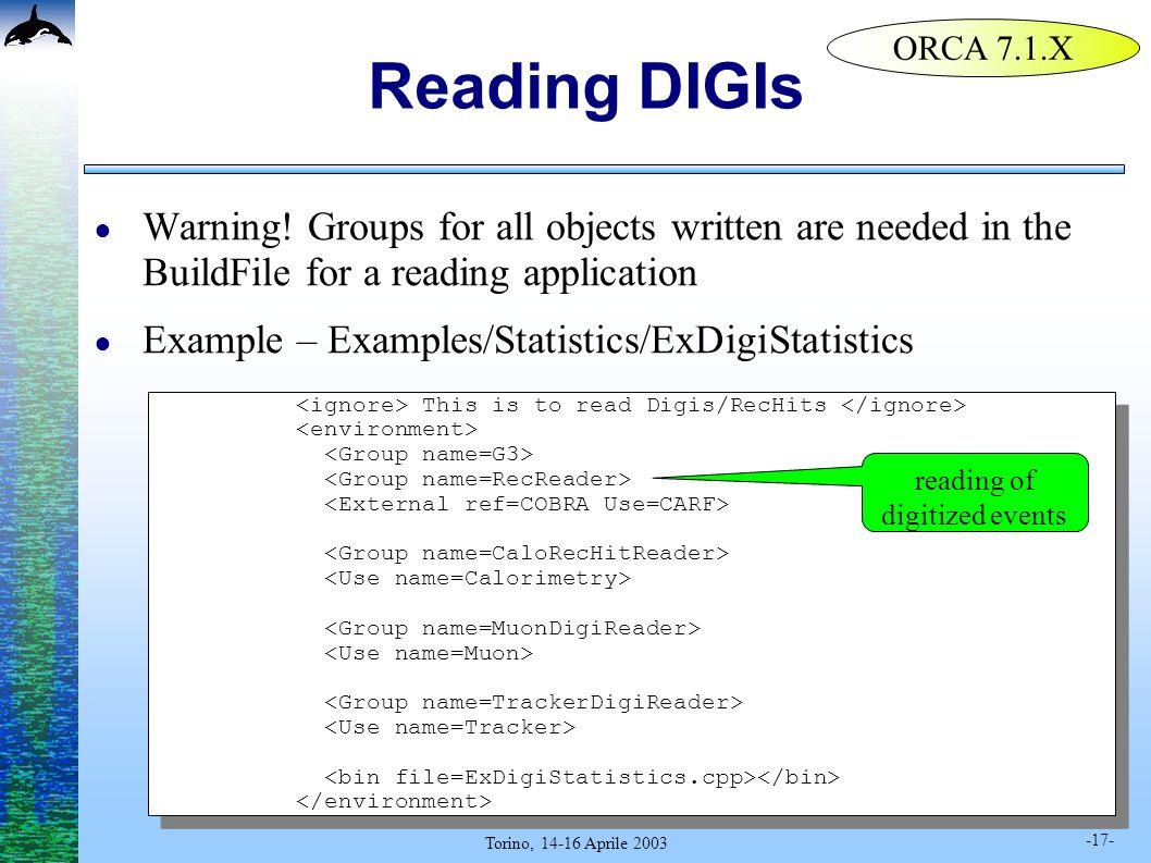 -17- Torino, 14-16 Aprile 2003 Reading DIGIs Warning.