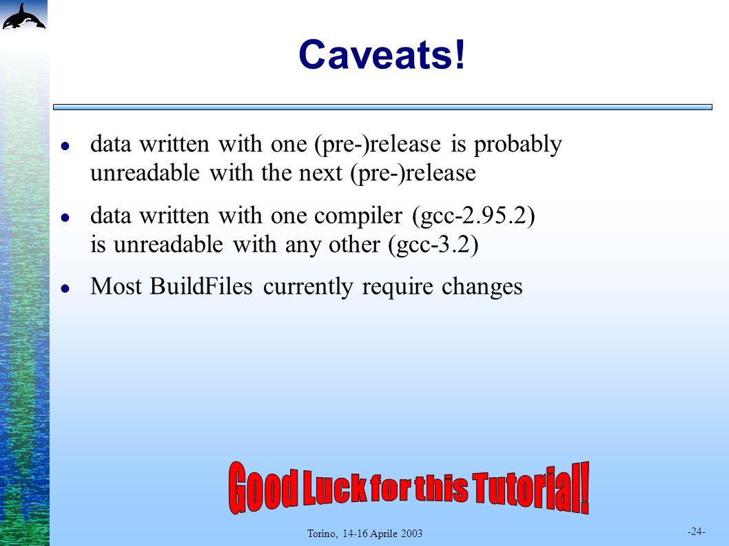 -24- Torino, 14-16 Aprile 2003 Caveats.