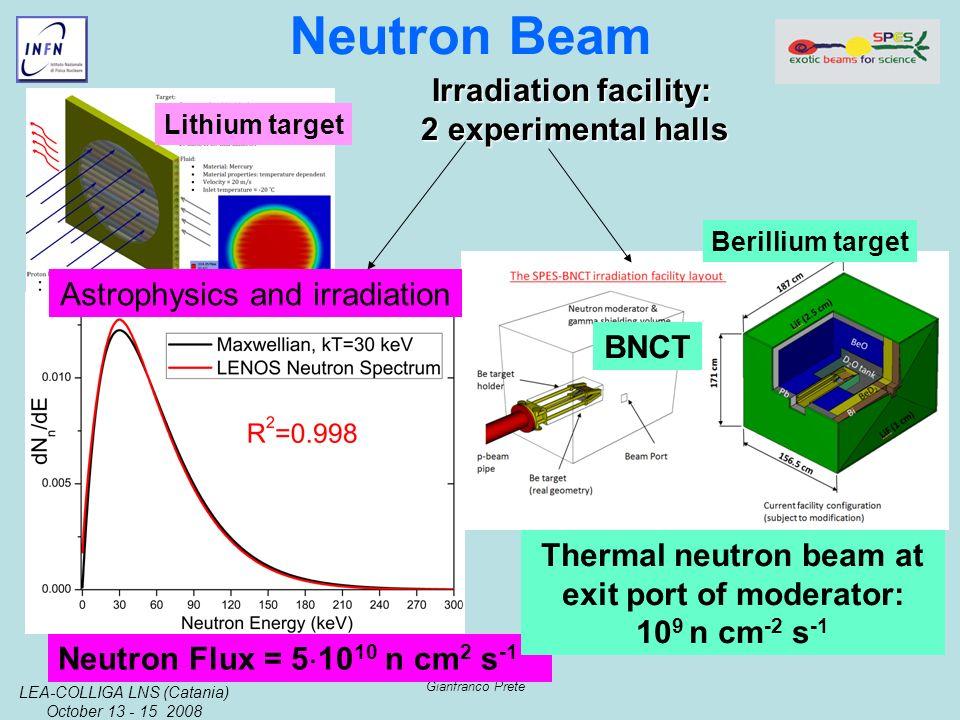 LEA-COLLIGA LNS (Catania) October 13 - 15 2008 Gianfranco Prete Neutron Beam Neutron Flux = 5 10 10 n cm 2 s -1 Lithium target Berillium target Thermal neutron beam at exit port of moderator: 10 9 n cm -2 s -1 Irradiation facility: 2 experimental halls BNCT Astrophysics and irradiation