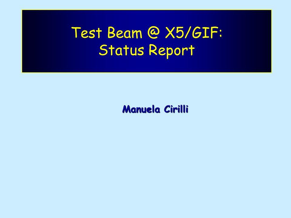 Test Beam @ X5/GIF: Status Report Manuela Cirilli
