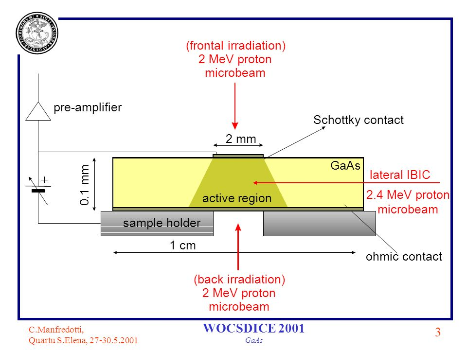 C.Manfredotti, Quartu S.Elena, 27-30.5.2001 4 WOCSDICE 2001 GaAs IBIC Set up frontal lateral Ion beam