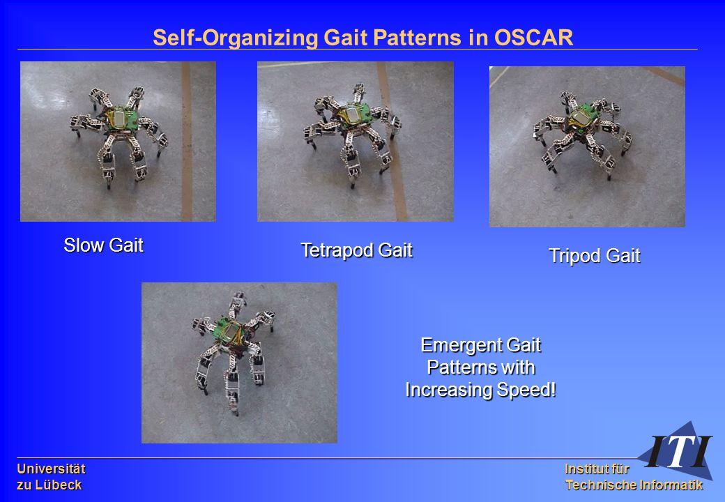 Universität zu Lübeck Institut für Technische Informatik Self-Organizing Gait Patterns in OSCAR Slow Gait Tetrapod Gait Tripod Gait Emergent Gait Patterns with Increasing Speed!