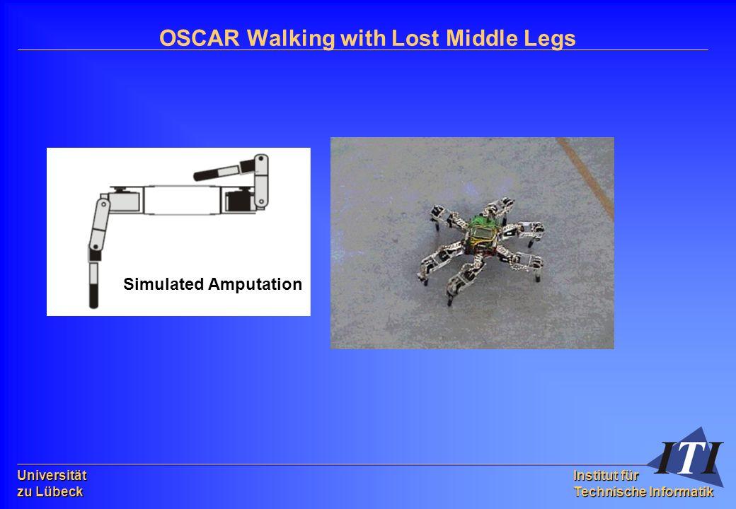 Universität zu Lübeck Institut für Technische Informatik OSCAR Walking with Lost Middle Legs Simulated Amputation