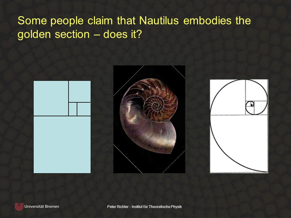 Peter Richter - Institut für Theoretische Physik Some people claim that Nautilus embodies the golden section – does it?