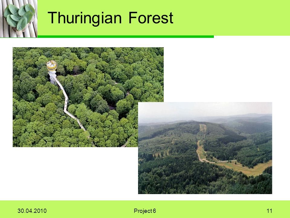 Project 611 Thuringian Forest