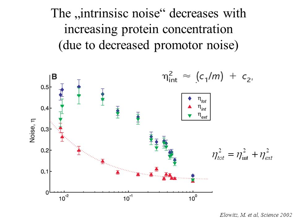 The intrinsisc noise decreases with increasing protein concentration (due to decreased promotor noise) Elowitz, M.