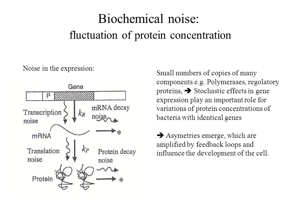 Deterministic model of gene expression from JJ Collins, Nature Reviews 2005