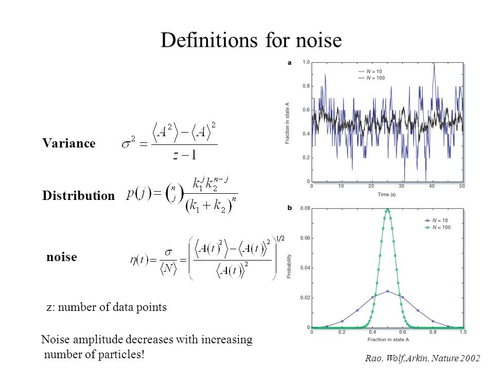 Definitions for noise noise Distribution Noise amplitude decreases with increasing number of particles.