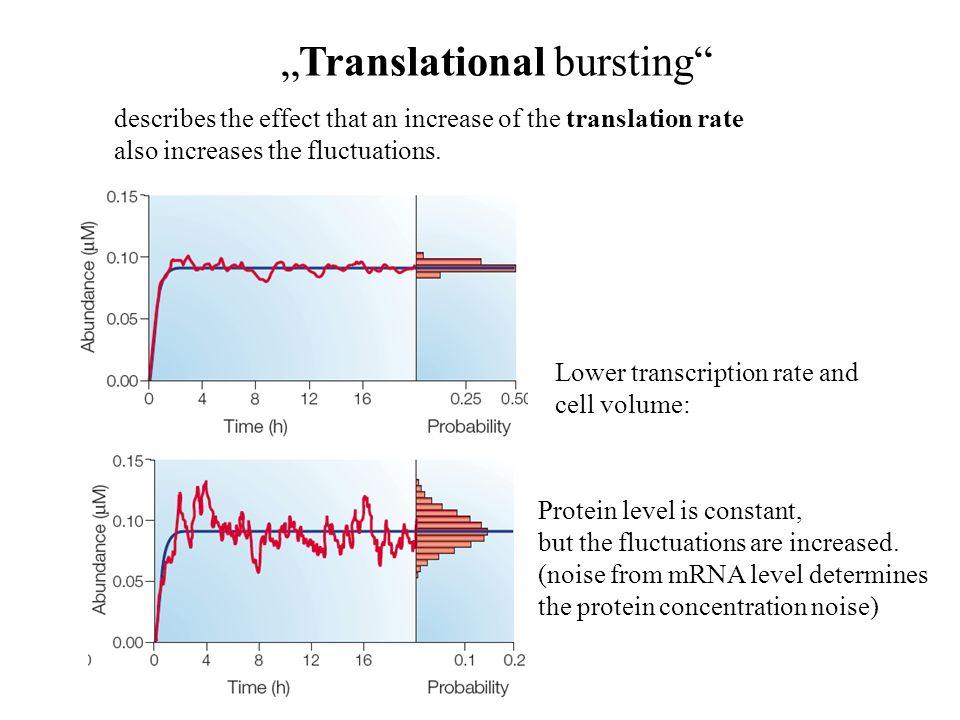 Slow promotors increase noise Transcriptional bursting low promotor rate + High translation rate