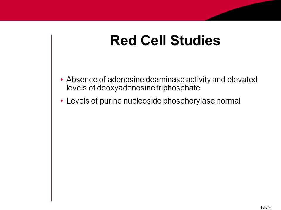 Seite 40 Red Cell Studies Absence of adenosine deaminase activity and elevated levels of deoxyadenosine triphosphate Levels of purine nucleoside phosphorylase normal