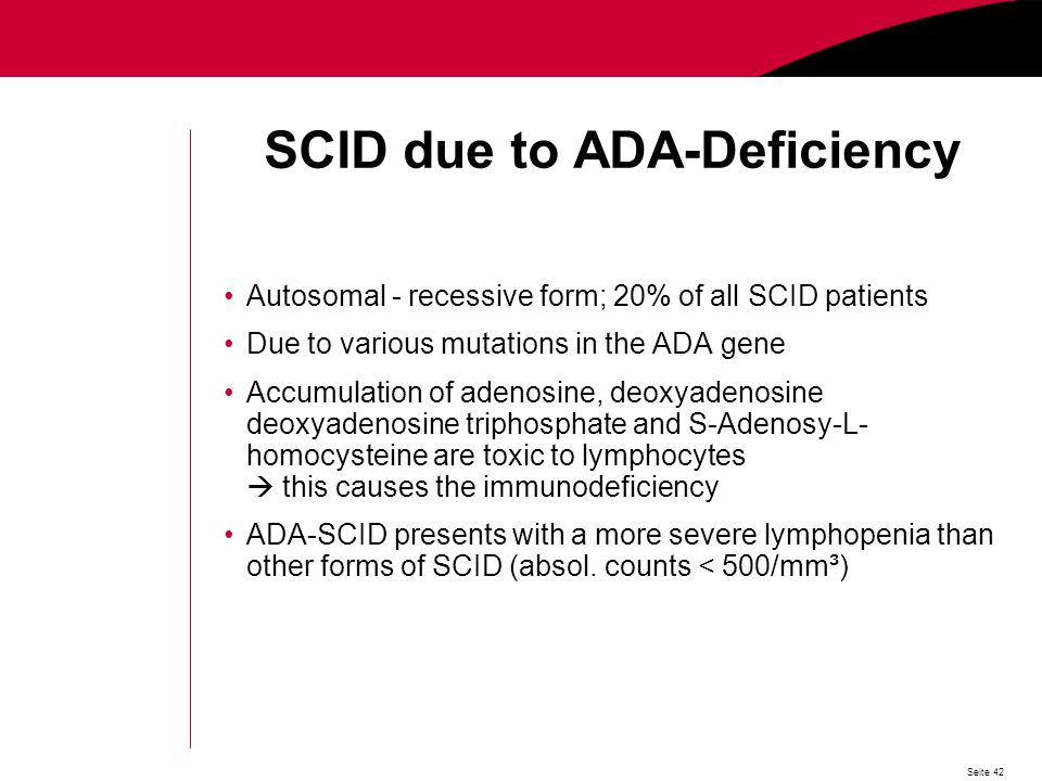 Seite 42 SCID due to ADA-Deficiency Autosomal - recessive form; 20% of all SCID patients Due to various mutations in the ADA gene Accumulation of adenosine, deoxyadenosine deoxyadenosine triphosphate and S-Adenosy-L- homocysteine are toxic to lymphocytes this causes the immunodeficiency ADA-SCID presents with a more severe lymphopenia than other forms of SCID (absol.