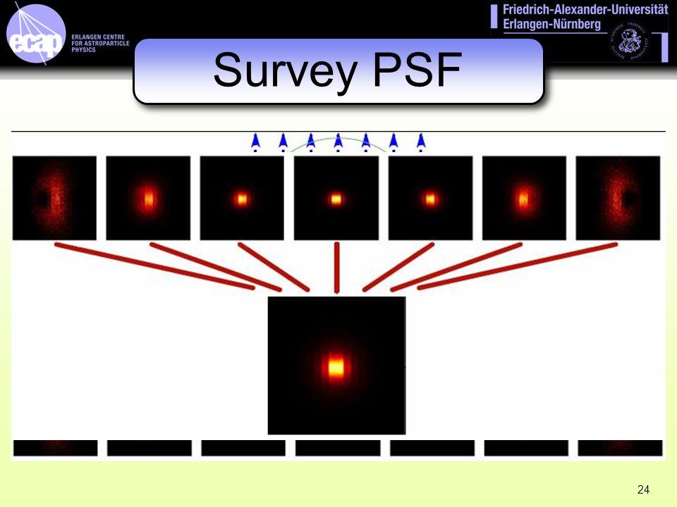 Survey PSF 24