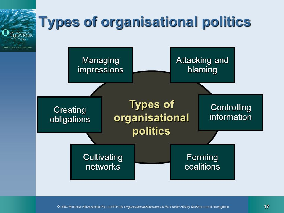 2003 McGraw-Hill Australia Pty Ltd PPTs t/a Organisational Behaviour on the Pacific Rim by McShane and Travaglione 17 Types of organisationalpolitics