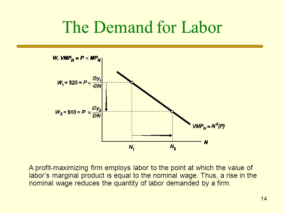 14 The Demand for Labor A profit-maximizing firm employs labor to the point at which the value of labors marginal product is equal to the nominal wage