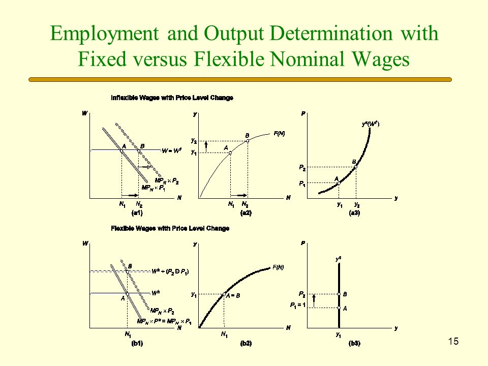15 Employment and Output Determination with Fixed versus Flexible Nominal Wages