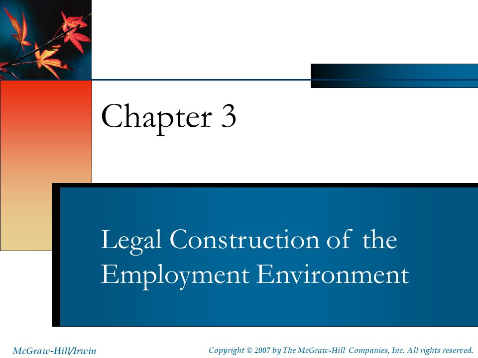 Legal Construction of the Employment Environment Chapter 3 McGraw-Hill/Irwin Copyright © 2007 by The McGraw-Hill Companies, Inc. All rights reserved.