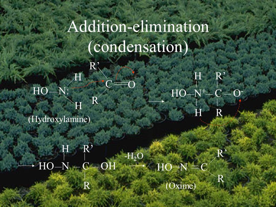 Addition-elimination (condensation) C O R R N:HO H H (Hydroxylamine) HON+N+ CO-O- H H R R NCOH HR R -H 2 O HONC R R (Oxime)