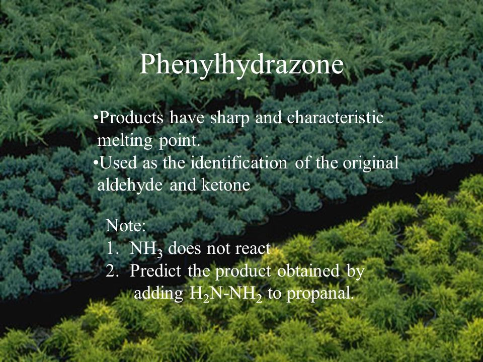 Phenylhydrazone Products have sharp and characteristic melting point.