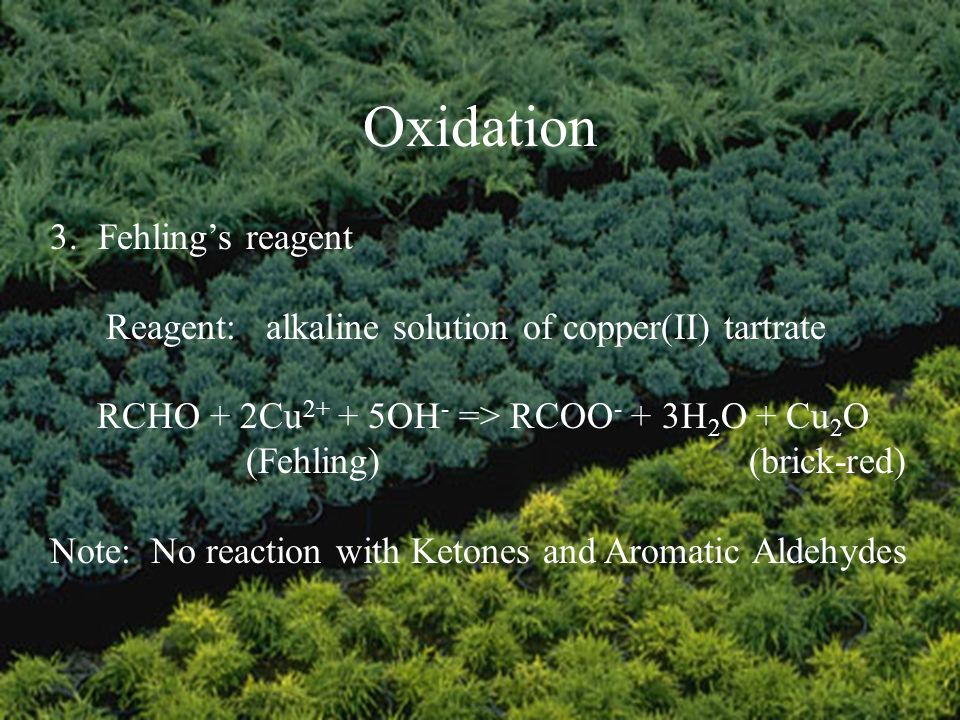 Oxidation 3.Fehlings reagent Reagent: alkaline solution of copper(II) tartrate RCHO + 2Cu 2+ + 5OH - => RCOO - + 3H 2 O + Cu 2 O (Fehling) (brick-red) Note: No reaction with Ketones and Aromatic Aldehydes